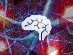 symbol/icon of a brain overlaying an abstract image of neurons