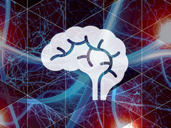 Brain Conditions logo