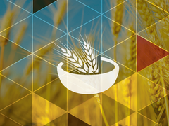Icon/symbol of bowl of wheat in a bowl and pictures of wheat